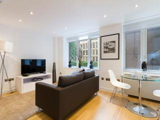 Modern 1 Bedroom Apartment in City of London, Londres