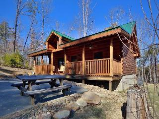 Skinny Dippin is a cozy 1 bedroom cabin with a swim spa right in cabin., Sevierville