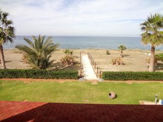 Beachfront 4BR Villa, private pool, mature garden