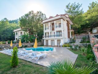 Olympia Luxury Villa B2 Hisaronu
