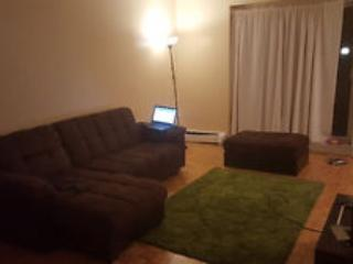 Fully Furnished One Bedroom Apartment, Hamilton