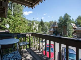 Brooktree Condo, Newly Furnished, On Bus Route (No Car Needed) Close to Vail