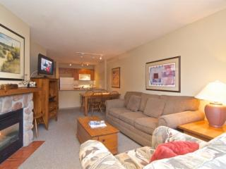Comfortable well equipped 1 bed , 1 bath condo in Deer Lodge unit #355, Whistler