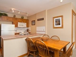 VILLAGE Location with MOUNTAIN Views. Spacious and Cozy Whistler Getaway