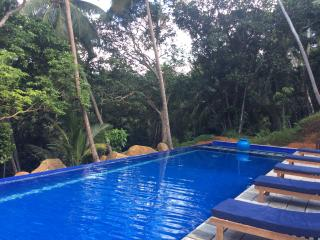 30 metre jungle edge pool with sun loungers. Largest private pool villa in Galle.