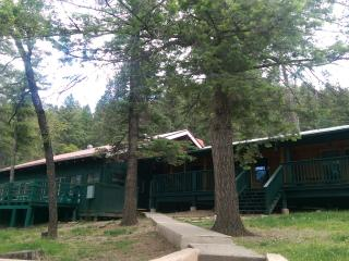 Cozy Economy Condo by the River With EXTRAS!, Ruidoso