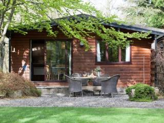 Cedar Cabin (SB) - Cosy atmosphere and one of the best views available in Scotland sitting on the shore of Lake of Menteith., Port of Menteith