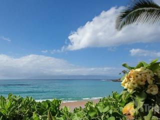 Walk to Napili Bay - Beautiful 2 bedroom / 1 bath apartment!, Honokowai