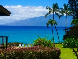 Ocean view-Lanai-walking distance to Farmers Market-Free Parking & WiFi