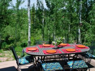 Best Value in Wildernest! Dog Friendly / Open Views of Back Country/Trails, Silverthorne