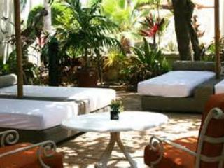 Tropical Lounge Area