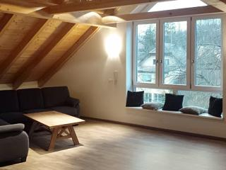2-story Bavarian flat with river view, Himmelkron
