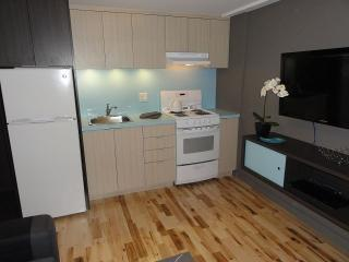 APARTMENT, NEW MODERN ,FULLY FURNISHED, Montreal