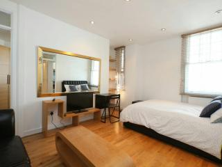 Amazing flat near Oxford street, London