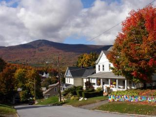 Cozy two bedroom apartment with Mt. Greylock views, Adams