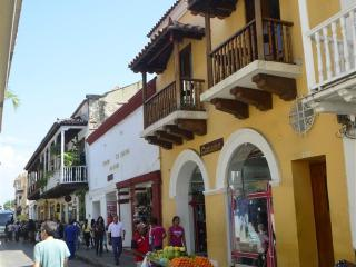 Old City Calle Moneda one bedroom w balcony -AC/hot H20/broadband WiFi, Cartagena