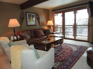 Amazing 2 Bedroom & 2 Bathroom Condo in Aspen (Lift One - 307 - 2B/2B)