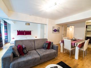 Porte du Temple:Comfortable one bedroom in Marais