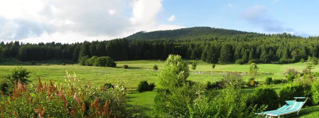 appartamento piano terra con giardino, Roana