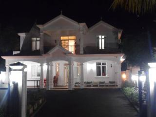 View of the biggest villa at night.