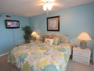 Master Bedroom with King Bed/Cable TV/Private Master Bathroom/Private Access to Ocean Front Patio
