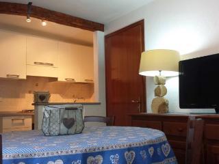 Maison di Luisa  Courmayeur apartment Genzianella