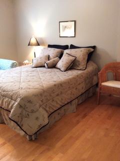 Chambre au rez-de-chaussée, lit queen, divan et salle de toilette avec douche adjacente.