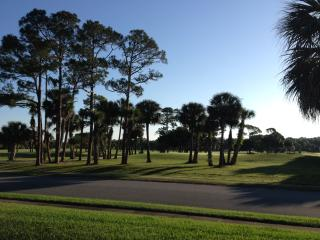 Overlooking Golf Course at 'Florida's Best Beach', New Smyrna Beach