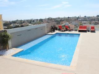 Large fantastic pool with sunbathing platform and Jacuzzi
