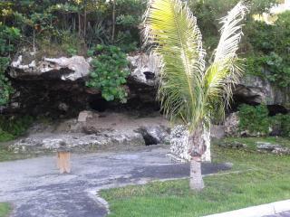 Tropical Gardens Apartment