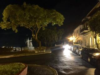 Night view of area and statue in front of house - the light shining on statue is on the roof of  apt