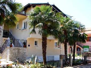 Apartments KIVI Novigrad - Studio THE PALM TREE