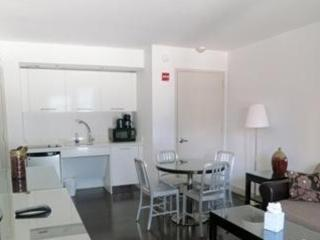 STUNNING AND FURNISHED 1 BEDROOM APARTMENT IN NEW YORK, New York City