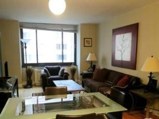 Beautiful Fully Furnished 1 Bedroom Condo in a Luxury Doorman Highrise, Catskill Region