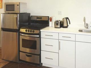 Gorgeous and Newly Furnished Apartment with Private Balcony, Long Island City