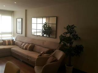 Modern Style Aparment in Malaga City.