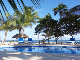 Casa Tortuga, Beautiful Beachfront 4bdrm Villa with pool located on Soliman Bay