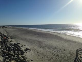 Great Views! Bike To Beach! Awesome Folly Condo!