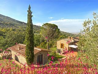 Antica Quercia Verde Cortona - a Tuscan Dream 1