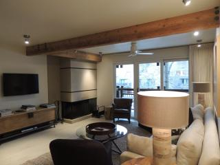 Beautiful 2 Bedroom, 2 Bathroom Condo in Aspen (Lift One - 203 - 2B/2B)