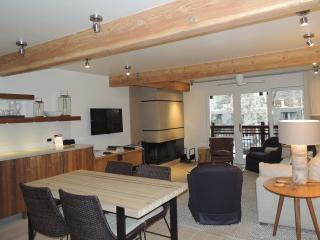 Beautiful 2 Bedroom, 2 Bathroom Condo in Aspen (Lift One - 203 - 2B/2B)