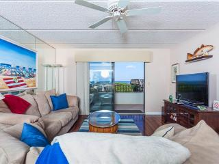 Windjammer 110 Luxury Beach Front, Newly Updated, Elevator, HDTV, Saint Augustine