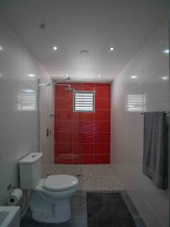 Bathroom bold use of red for pure drama, modern and sleek