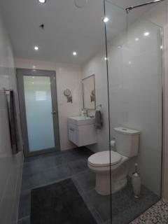European sytle bathroom with open glass shower.