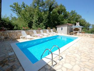 Apartment PLITVICE 1 in Malinska with pool and gym