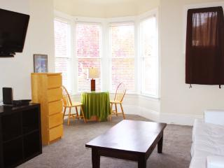 1 Bedroom Victorian Near Buena Vista Park, San Francisco