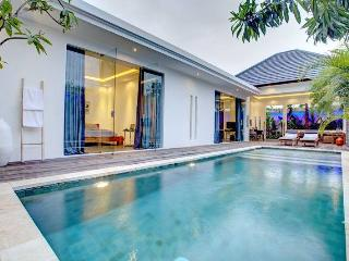 Modern Unique Private Pool and Garden Villa