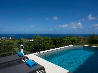 Alouette - Ideal for Couples and Families, Beautiful Pool and Beach, St. Barthelemy