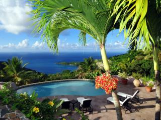 Canefield House - Ideal for Couples and Families, Beautiful Pool and Beach, Tortola