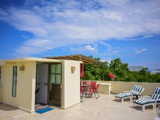 BIG GROUPS OF 11! PH with 3 bd and private terrace, Playa del Carmen